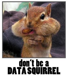 dataSquirrel